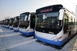 Қызылорда қаласында автобус паркі жасақталуда
