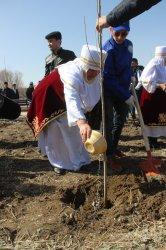 Қызылордада «Наурыз тал» дәстүрі жандандырылды