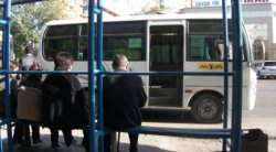 Автобусты киіз үйде күтуге қалай қарайсыз?