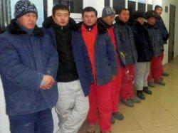 Қызылордалық полицейлер Қытай 32 азаматын ұстады