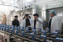Ауыл шаруашылық министрі Қызылорда облысында болды