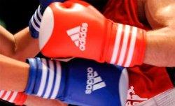 Қызылордада бокстан республикалық турнир өтуде