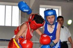 Қызылордада бокстан ҚР оңтүстік-батыс аймақтық чемпионаты өтеді