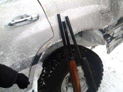 Қызылордалық полицейлер ақбөкендерді заңсыз аулаудың тағы бір дерегін анықтады