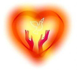 Жаңақорған жастарының «Мейірімді жүрегі»