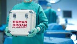 Трансплантология саласы әрі қарай дамиды